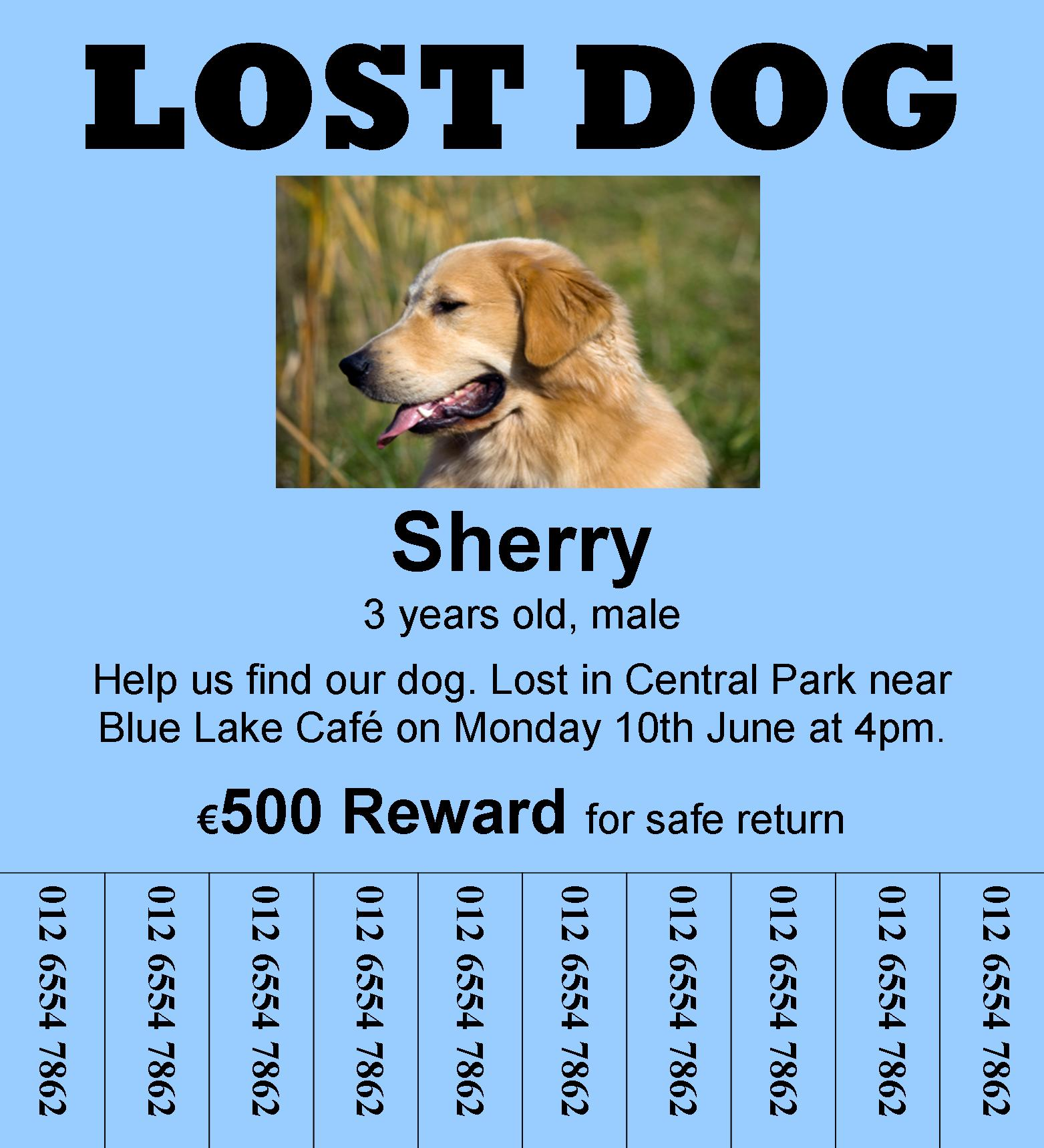 Doc598644 Lost Pet Poster Template 20 Nice Lost Pet Flyer – Lost Pet Template